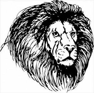 Lions Head Sketch